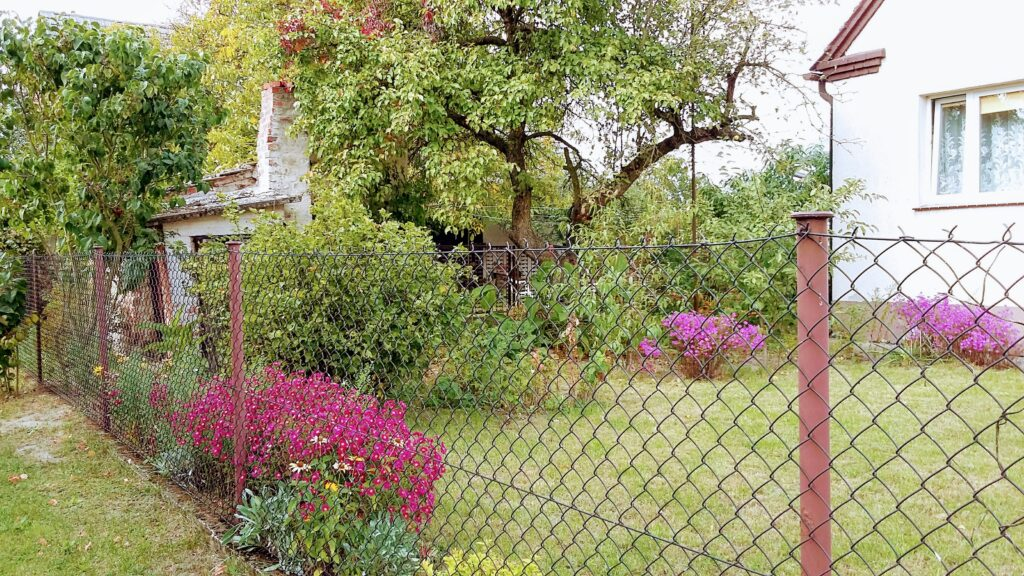 A view to an adjacent garden with fruit tree and flowers