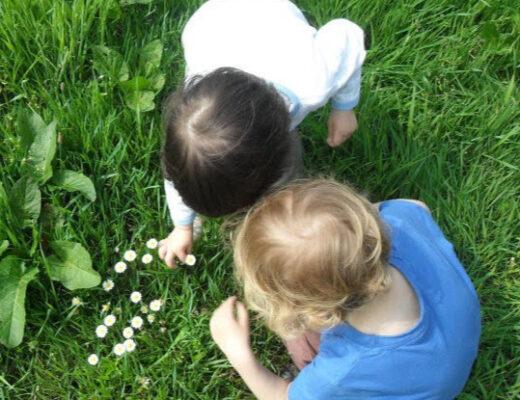 Top view of kids' head picking flowers in garden